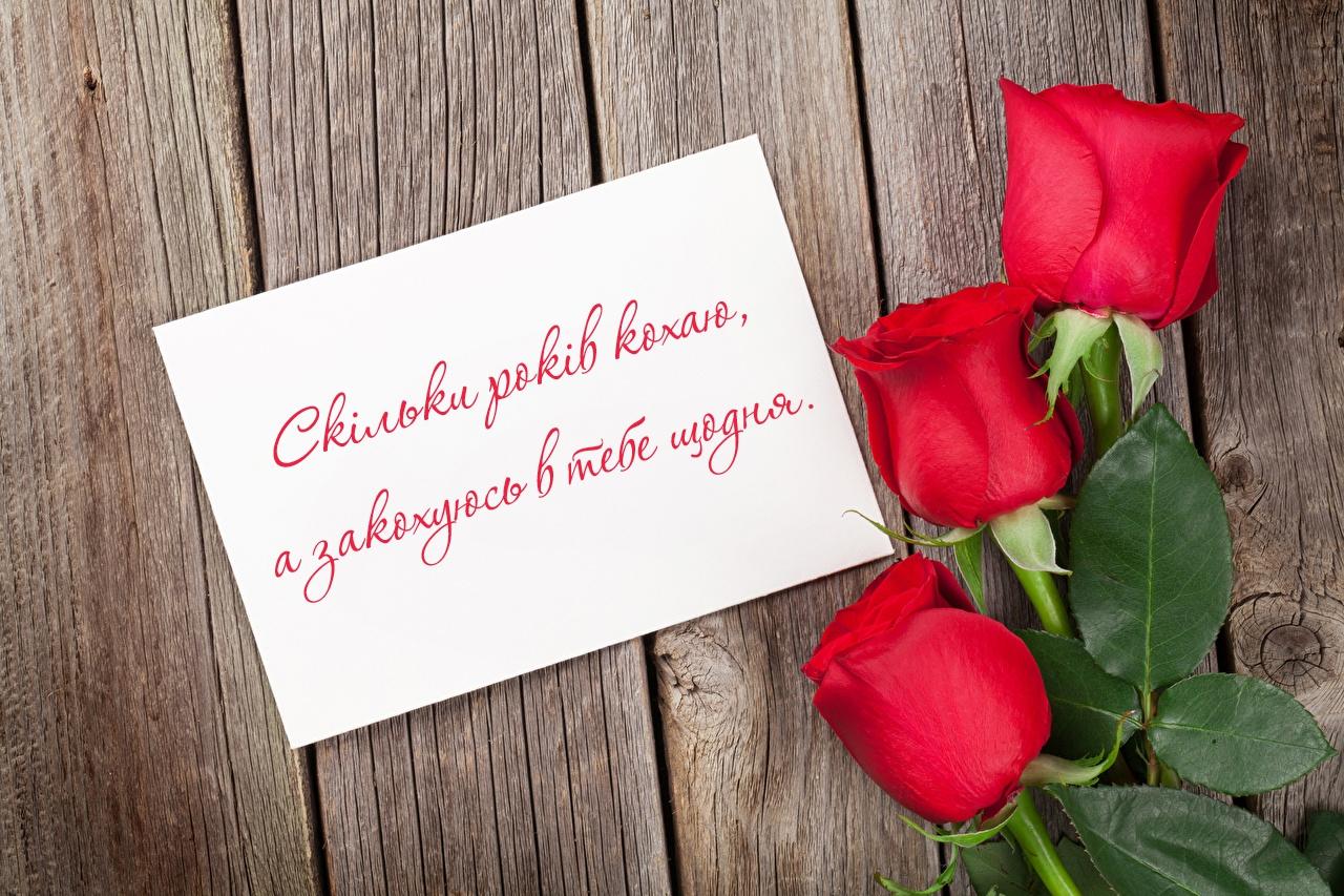 Для тебе коханої із днем св. Валентина